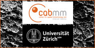 Competence Centre for Applied Biotechnology and Molecular Medicine, University of Zurich