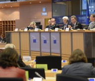 EP committee calls for radical changes to 2015 budget