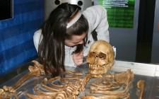 Child observing skeleton