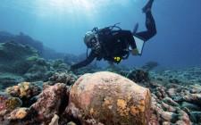 © NOAA's National Ocean Service