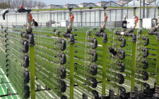Algae bioreactor at AlgaeParc, Wageningen, the Netherlands © www.BiobasedWorld.de